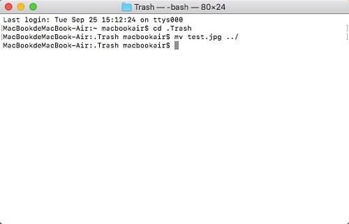 Mac Dateien durch Terminal wiederherstellen