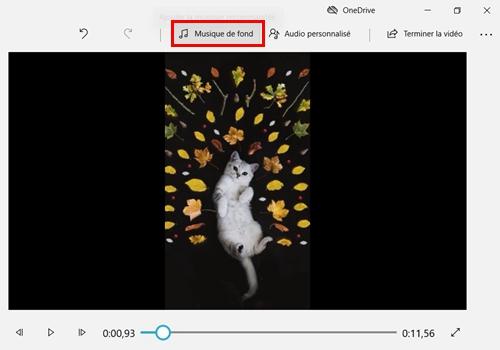 Définir une musique pour fusionner les vidéos