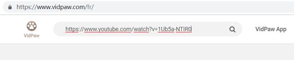 entrer url vidéo dans barre de rechercher vidpaw