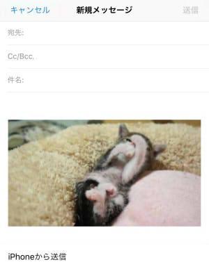 メール GIF再生