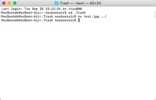 Recover Deleted Files on Mac via Terminal