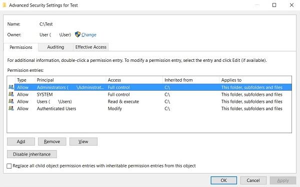Advanced Security Settings on Windows