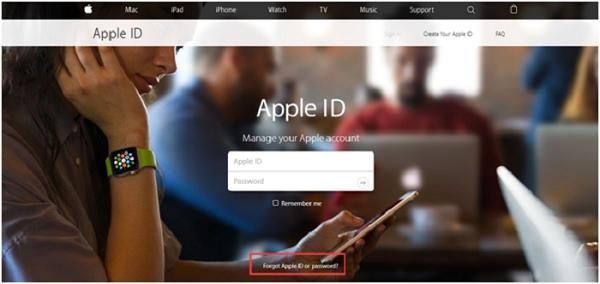 Reset Apple Password
